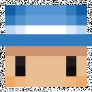 Rogue_du78's head