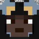 robin6996's head